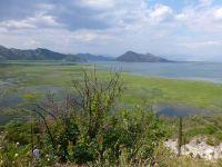 ... auf Lake Shkodra.