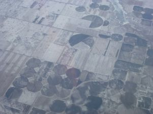 seltsame Kreise am Boden