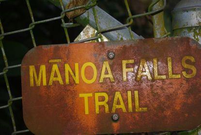 Am Wanderweg zu den Manoa Falls
