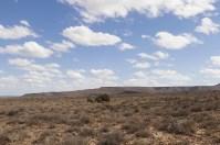 ... danach kommt Nichts – die Koroo – Halbwüste