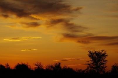 Bei Sonnenuntergang ist die Kalahari am schönsten.
