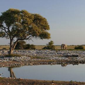 Quer durch Namibia, Teil 3
