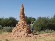 Immer wieder am Wegesrand zu sehen: Termitenhügel. (Foto: Christian Briglia)