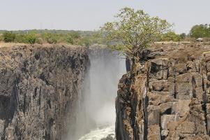 Die Victoria Falls...