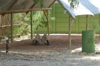 Die Pflege des Campingplatzes bedarf besonderer Anstrengungen.