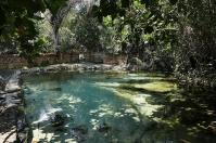 Mit exakt 37 Grad quillt das Wasser an den Kapishya Hotsprings aus der Erde ...