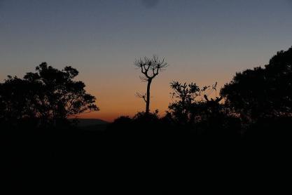 Im Molotja-Naturpark neigt sich der Tag zu Ende...