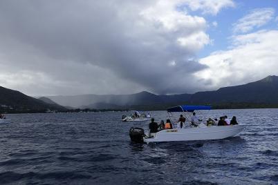 In der Bucht von Tamarin kann man mit Delfinen schwimmen...