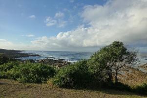 Für die wild schöne Küstenlandschaft bei Port Elisabeth blieb zunächst keine Zeit.