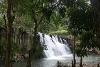 Wie Orgelpfeifen stehen die Basaltfelsen an den Rochester - Wasserfällen ganz im Süden von Mauritius