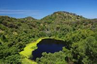 Im Hinterland der australischen Südküste befindet sich das geologisch jüngste Gebiet des Kontinents. Üppig grüne Vulkankrater mit tiefblauen Kratersehen kennzeichnen heute diese interessante Gegend.