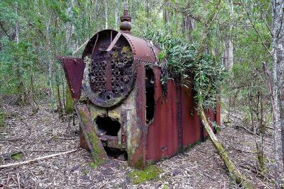 Mitten in den Regenwäldern sind immer wieder Relikte aus der Vergangenheit zu sehen, hier eine Dampfmaschine, die vor einhundert Jahren bei Holzfällerarbeiten genutzt wurde.