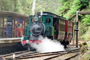 Einige tausend Liter Wasser verbraucht die Dampflok bei einer Fahrt durch den Regenwald. Unterwegs müssen etliche Tankstopps eingelegt werden.