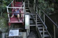 In früheren Zeiten waren die Fahrten mit dem Mountain Devil nicht so komfortabel.