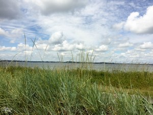Eckernförde 2016 06 21 13.43.03 620x465 Moin Moin oder Matjes yes yes yes