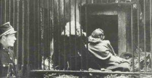 Frauen hinter Gittern im Zoo Antwerpen