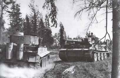 In den Wäldern der mittleren Ostfront begegnen sich zwei deutsche Tiger-Panzer
