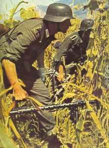 Deutsche Infanterie geht im Sommer 1942 am Fuße des Kaukasus in einem Kornfeld vor