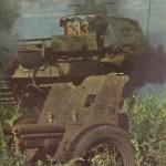 Wehrmacht Kriegsgliederung – Panzerschlacht von Kursk