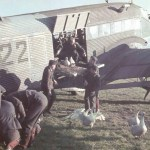 Gänsetransport mit der Ju 52