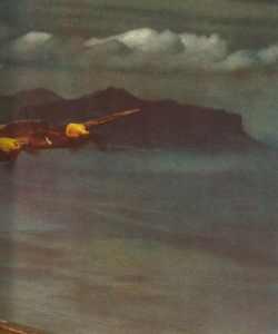 Bf 110 fliegen vor der afrikanischen Küste