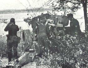 Getarnte Feuerstellung einer Pak 43/41 am Rhein