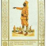 Kriegstagebuch 8. November 1916
