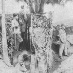 Kriegstagebuch 5. Dezember 1916