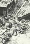 Tote vor einem zertrümmerten Unterstand