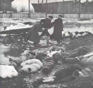 Leichen von Opfern in Leningrad