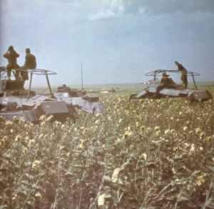 Deutsche Panzerspähwagen in der  Steppe