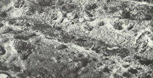 Luftaufnahme der Westfront