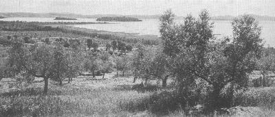 Transimenischen See