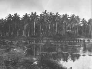 Kampfpatrouille der US-Marines auf Guadalcanal