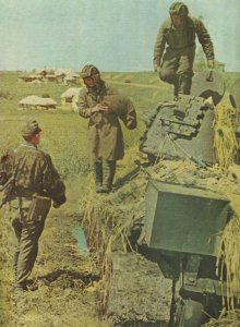 russische Pnazerbesatzung ergibt sich SS