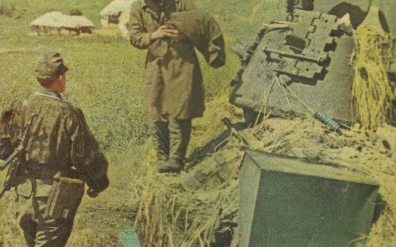 5. SS-Panzer-Division Wiking