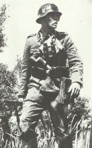 SS-Oberscharführer des Germania-Regiments