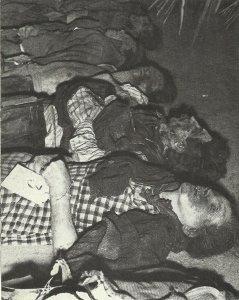 Ermordete Volksdeutsche