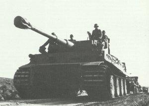 Tiger-Panzer in Afrika