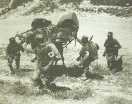 verwundete britische Soldaten auf Pferdetragen