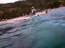Sandra weicht dem Walhai aus