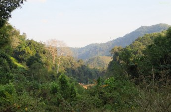 Louang Namtha / Laos - 05.03.15