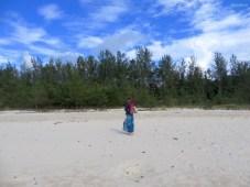 Strand geht über in Nadelwald