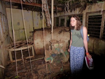 verlassenes Haus im Dschungel