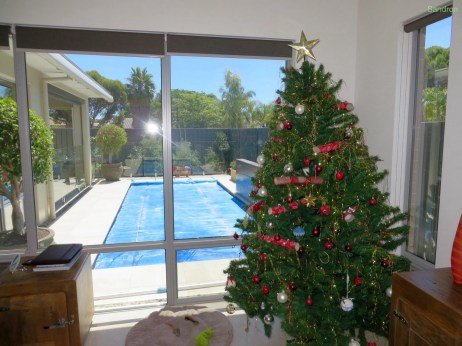 Weihnachten mit Pool