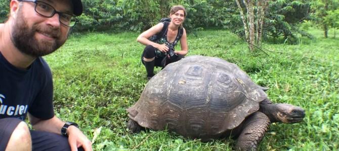 10 Erkenntnisse von den Galapagosinseln