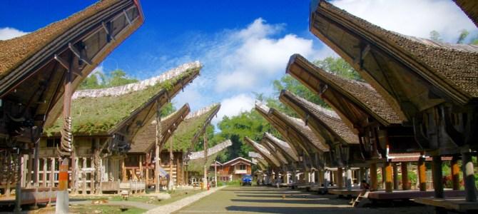 Süd-Sulawesi und die blutigste Beerdigung der Welt