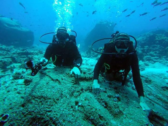 Taucher-am-Riff-Galapagos