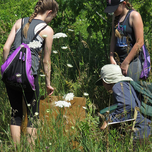 Themed Day Camps: Jr. Naturalist Training @ Big Hill Center