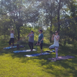 September Prairie Yoga at Welty @ Welty Environmental Center